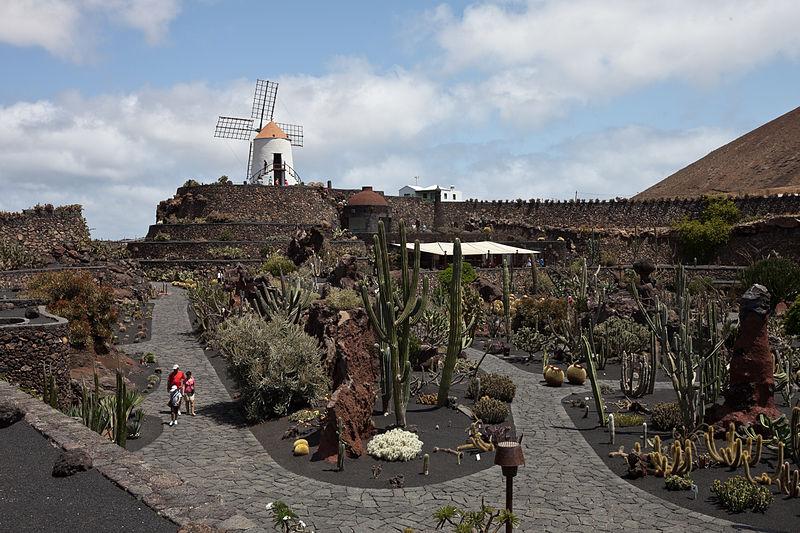Jardín de Cactus - Taxidearrecife.com