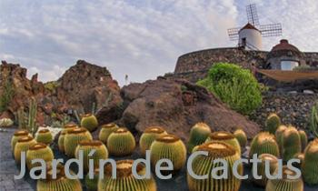 TaxideArrecife.com TAXI EN ARRECIFE